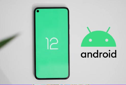 O Android 12 deve começar a aparecer em breve